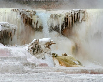 Dazzling Mineral Terraces at Mammoth Hot Springs in Yellowstone National Park