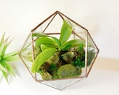 Glass Terrarium Glass Terrarium Modern Planter For Indoor Gardening Stained Glass Terrarium Triangular Orthobicupola Made To Order