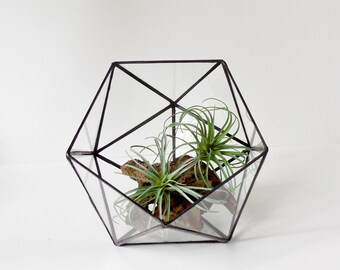 Terrarium, Icosahedron, Glass Terrarium, clear glass planter geometric terrarium. Made To Order