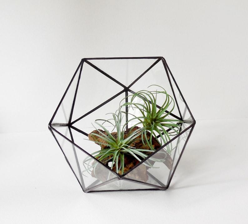 Terrarium Icosahedron Glass Terrarium Clear Glass Planter Etsy