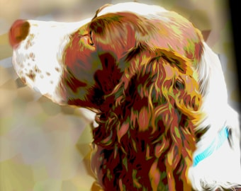 Custom English Springer Spaniel Digital Painting