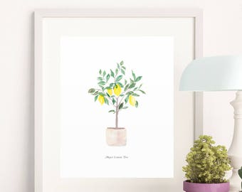 Meyer Lemon Tree Watercolor Art Print - 8x10 home decor wall artwork office modern trendy lemons greenery kitchen office botanical garden