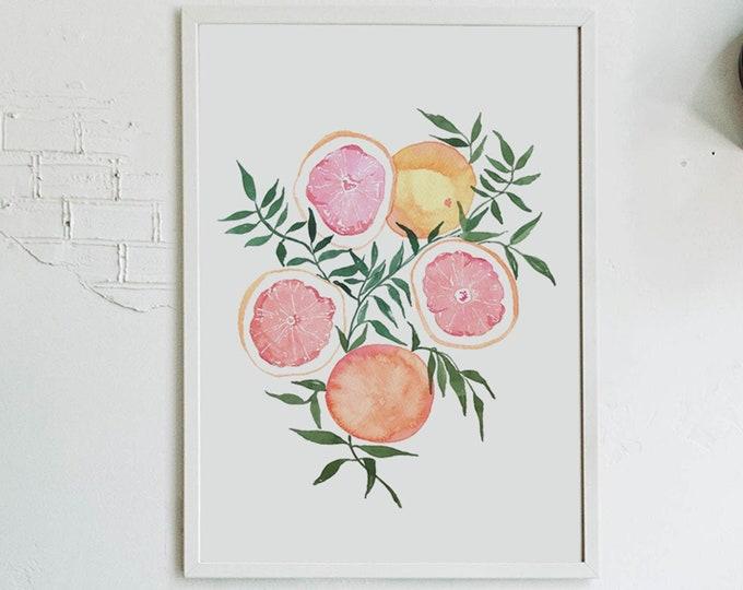 Featured listing image: Citrus Fine Art Print - Oranges Grapefruit Artwork modern watercolor illustration fruit pink yellow orange green boho