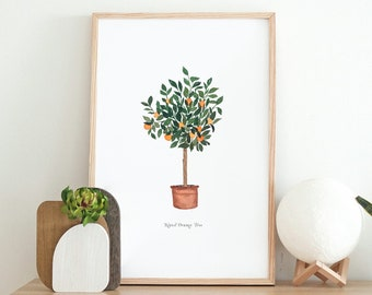 Navel Orange Citrus Tree Watercolor Art Print - home decor wall artwork office modern trendy oranges greenery kitchen office garden