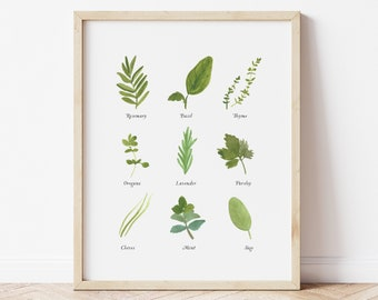 Kitchen Herbs Watercolor Art Print - Rosemary Basil Thyme Mint Sage Chives Lavender home decor wall artwork greenery botanical garden