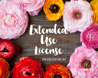 Extended Use Commercial License for one clip art set