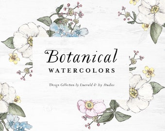 Botanical Flowers Watercolor Clipart - vintage clip art hand painted illustration rose anemone greenery wedding stationery graphic design