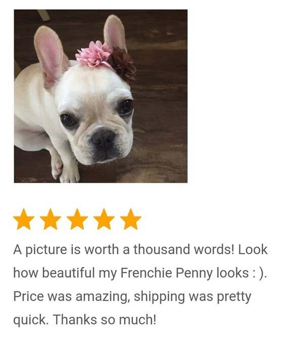 Pink Brown Puppy Bow French Bulldog Accessories Puppy Flower Headband