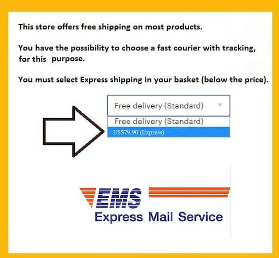 EMS Express mail Service Additional fast shipping your Mask