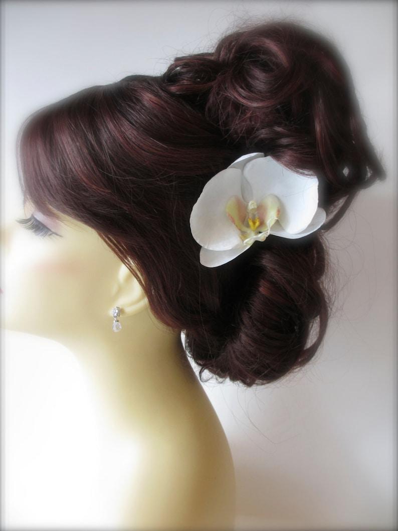 Clip di capelli orchidea Phalaenopsis nozze sposa accessori  90514a54f9d0