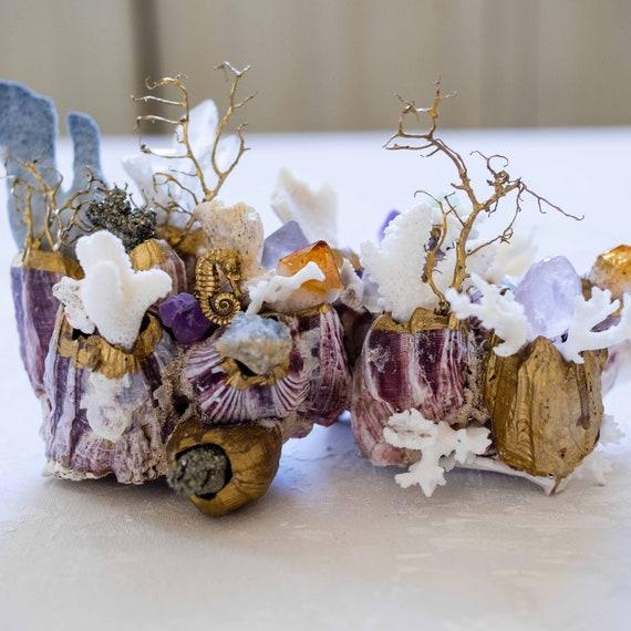 Sea Barnacle Gemstone Sea Garden Object
