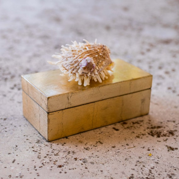 Medium brushed gold box w/ spiny seashell