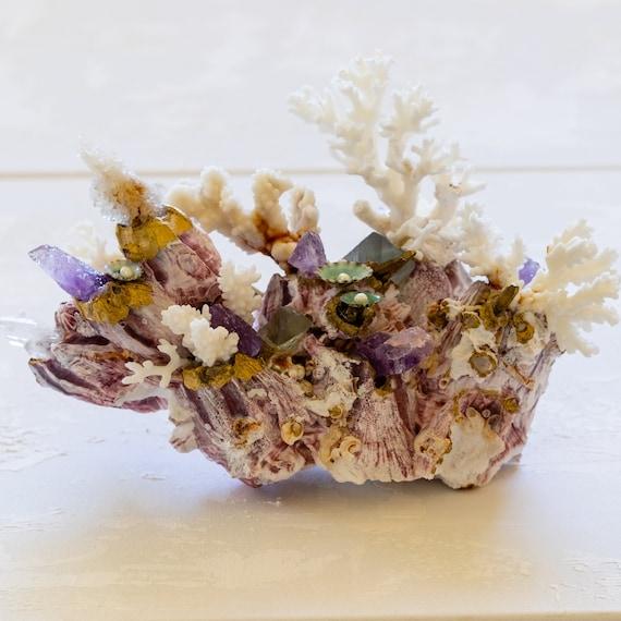 Sea garden, seashell decor, Coastal Home Decor, Seashell object, Home Decor, shell decor, coastal farmhouse decor