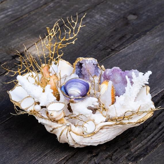 Sea garden clam shell scene, coastal decor, Seashell decor, seashell display, seashell art, mermaid home decor, beach house decor