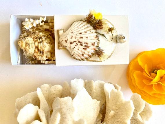Seashell Gift Box, Treasure Gift Box, Get Well Soon Gift Box, Self Care Package, Wellness Gift Box, Seashell Decor, shells