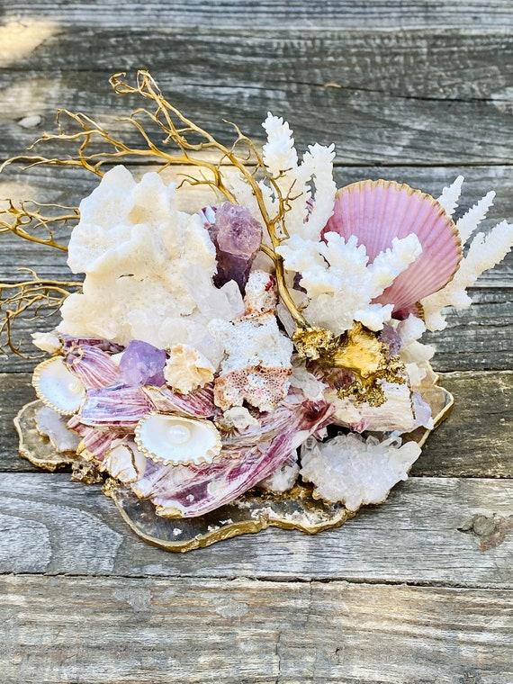 Sea Barnacle Gemstone Sea Garden Object, Barnacles, starfish, seashell art, nautical, beach house decor, seashell decor, Sea life decor
