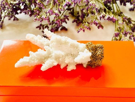 Small orange lacquer box with Coral, orange lacquer box, Agate box, Desk decor, Home decor box, Nautical decor