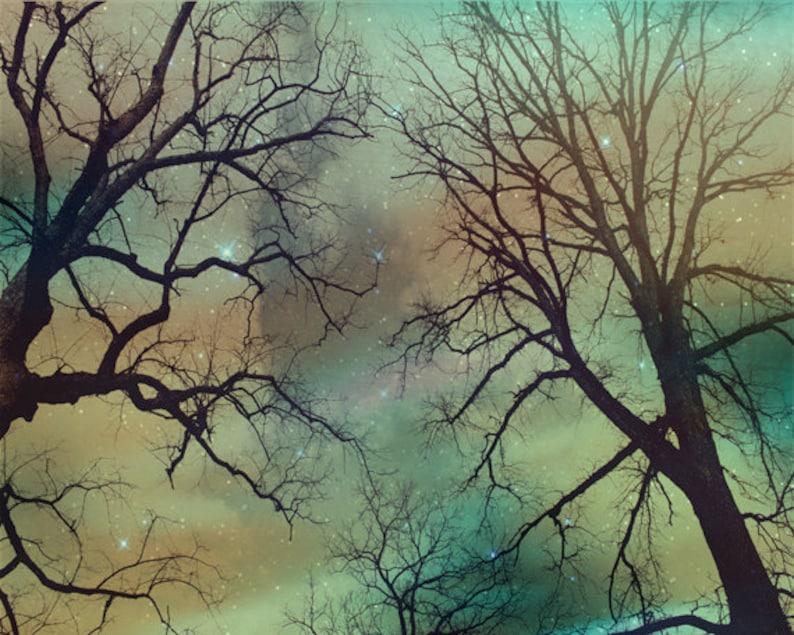 Tree Silhouette Sky Stars Art Print  Peach Aqua Nursery Night image 0
