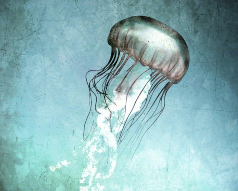 Jellyfish Art Print  Teal Aqua Navy Blue  Beach House Home image 0