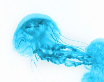 Jellyfish Abstract Art Print - Aqua White Blue Surreal Home Decor Wall Art Beach House Photograph