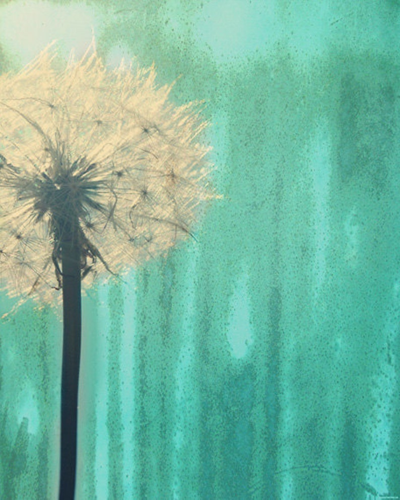 Dandelion Art Print  Aqua Green Nursery Childrens Room Home image 0