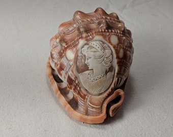 Carved Cameo on Conch Shell - Snomigliano Style - Steampunk and Victorian Appeal - Home Decor