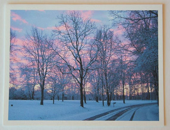 Snowy Sunrise, note card, blank greeting card, winter wonderland, fine art, single card, photo greeting cards, woodland scene, frost, trees