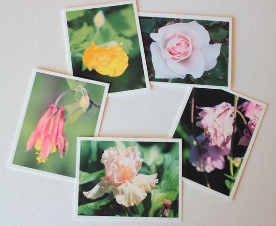 Colorful Flowers Photos 1, Fine Art Greeting Card Set, box of 10 w/envelopes, Gift for Gardeners, Blank Greeting Cards Photo greeting cards