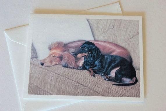 Dachshunds, note card, blank greeting card, pastel pet portrait, dog art, fine art greeting cards