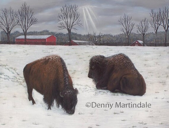 Buffalo, buffalo art, animal art, fine art print, giclee print, wildlife art, bison, buffalo painting, home decor, collectable art