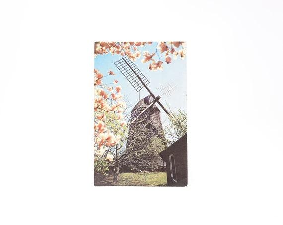 Vintage Easthampton Windmill Postcard Kodachrome Photo Card 1950s Long Island Souvenir Postcard Hamptons Scene Magnolias Historical Landmark