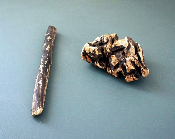 Driftwood Pieces Pair Unique Wood Form Dark Brown Weathered Sea Worn Beach Find Long Island Sound Salvaged Repurpose Chunk Drift Wood Stick