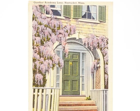 Vintage Postcard Nantucket MA Gunther Academy Lane Post Card 40s Tichnor Quality Views 66810 Linen Postcard Wisteria Street View Building
