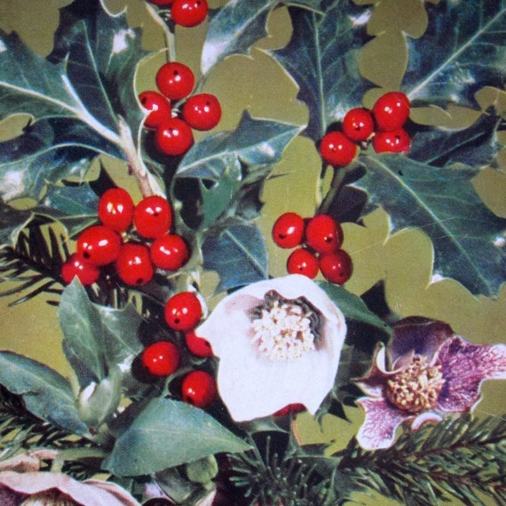 Christmas Post Card Midcentury Germany Holiday Holly Photo