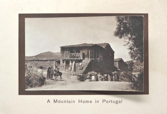 Antique Greeting Cards Portugal Consulate Photos 1900s