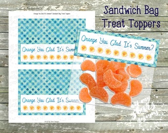 Orange You Glad It's Summer? - Sandwich Bag Toppers  | INSTANT DOWNLOAD | Favor Tag - Treat Tag | Classroom End of Year Party | Class Treats