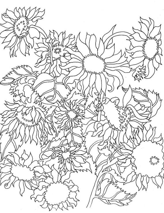 Descargar libro para colorear flores pájaros mariposas | Etsy