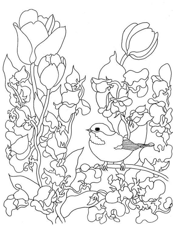 Descargar libro para colorear flores pájaros mariposas   Etsy
