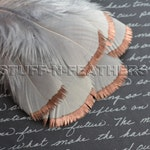 COPPER DIPPED Silver Gray feathers – metallic copper hand painted individual turkey feathers / 3-5 in (7.5-12.5 cm) long, 6 pcs/ F112-3C