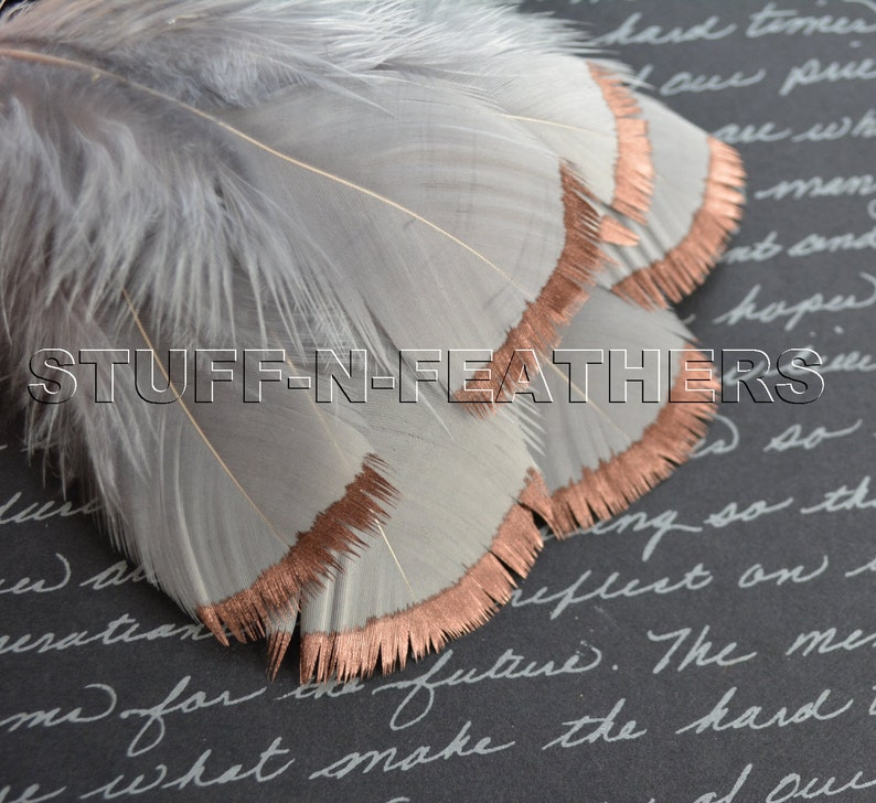 COPPER DIPPED Silver Gray feathers  metallic copper hand image 0