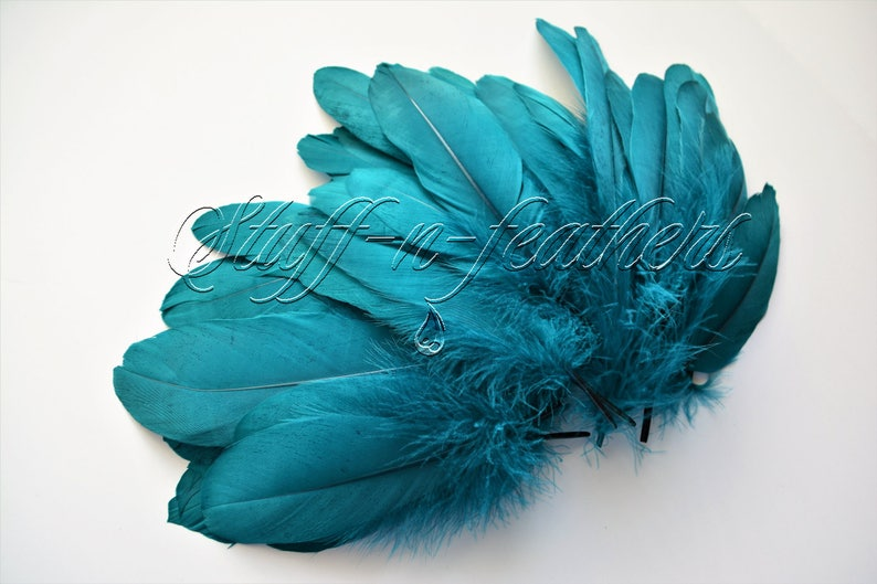 Wholesale / bulk feathers  GOOSE pallets feathers Dark Teal image 0