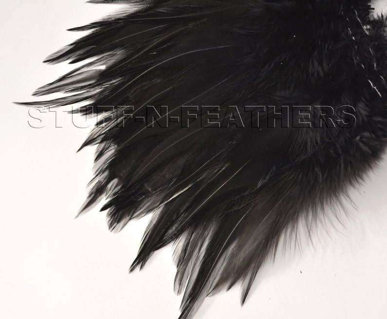 BLACK rooster saddle feathers for millinery fly fishing image 0