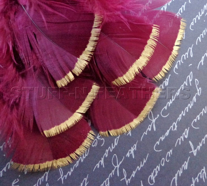 GOLD DIPPED burgundy feathers metallic gold tip hand painted image 0