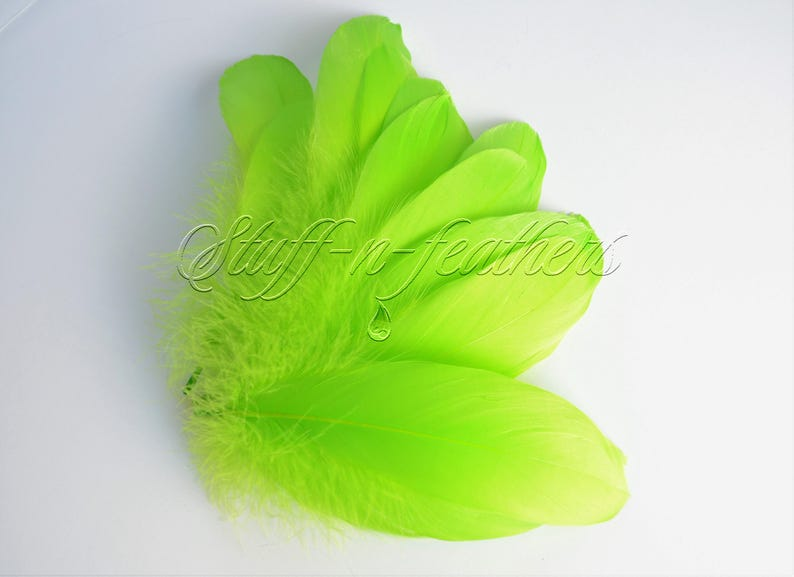 Lime Green GOOSE feathers pallets loose green feathers for image 0