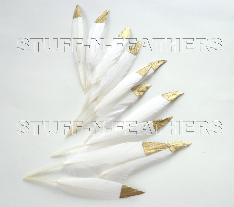 GOLD dipped natural white feathers metallic gold hand painted image 0