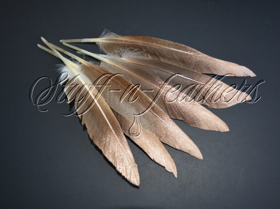 Natural Brown Duck Feathers With Sparkling Copper Rose Gold Etsy