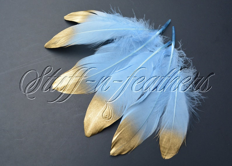 Gold Dipped feathers  Baby Blue GOOSE feathers with Gold Tips image 0