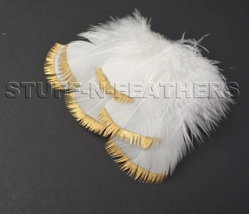 GOLD DIPPED natural white / off white feathers metallic gold image 0