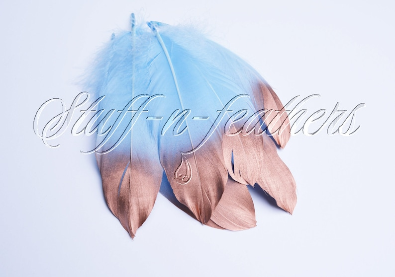 Copper Dipped feathers  Baby Blue GOOSE feathers with Bright image 0