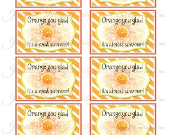 "instant download...  DIY Printable Appreciation ""Orange You Glad"" Gift Tags"